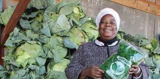 Anna Matote Mavula, the proud owner of Mavula Enterprises says patience has played a big part in growing her business from humble beginnings to where it is today.